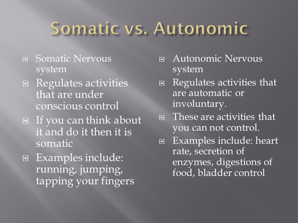  Somatic Nervous system  Regulates activities that are under conscious control  If you can think about it and do it then it is somatic  Examples include: running, jumping, tapping your fingers  Autonomic Nervous system  Regulates activities that are automatic or involuntary.