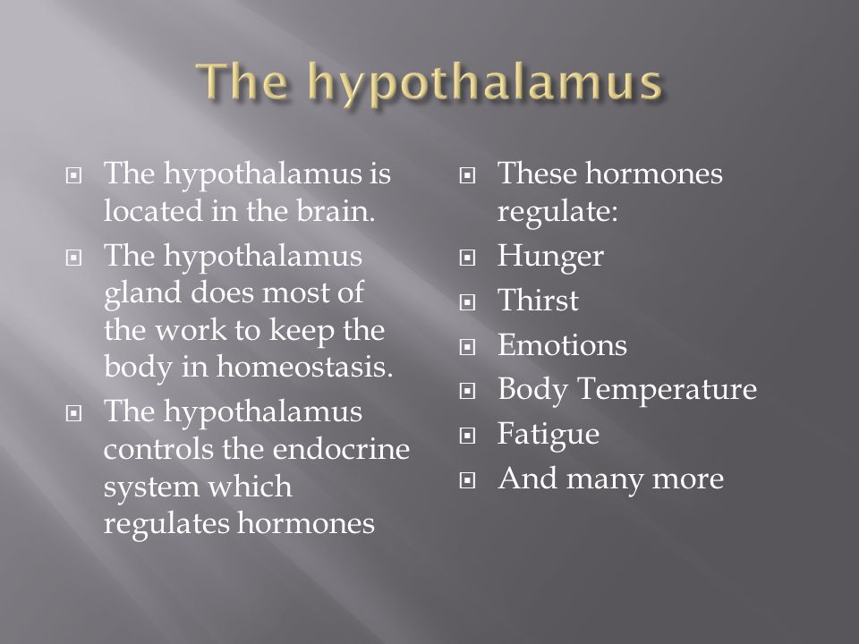  The hypothalamus is located in the brain.