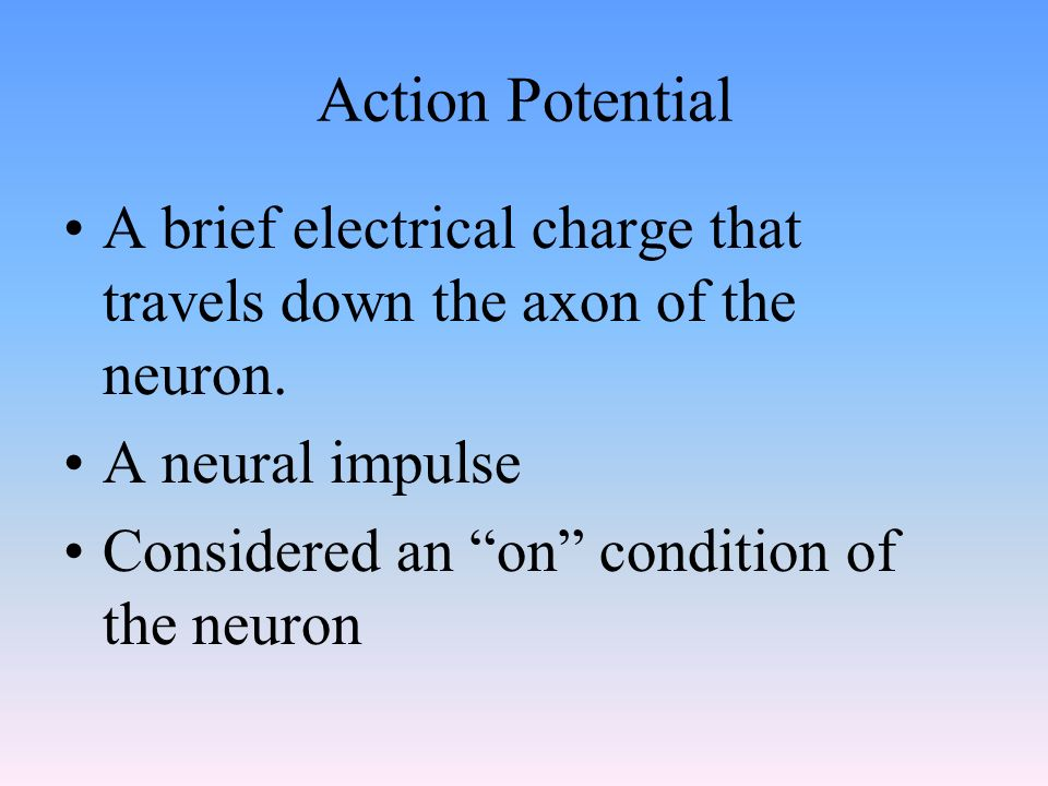 Action Potential A brief electrical charge that travels down the axon of the neuron.
