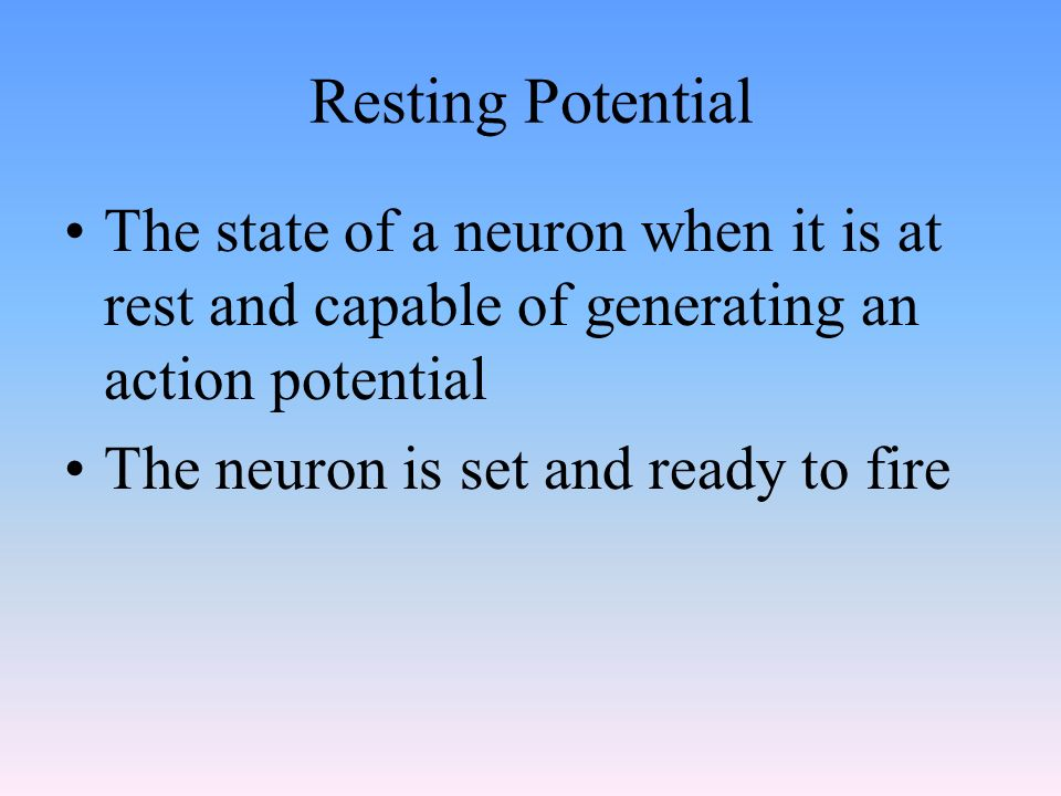 Resting Potential The state of a neuron when it is at rest and capable of generating an action potential The neuron is set and ready to fire