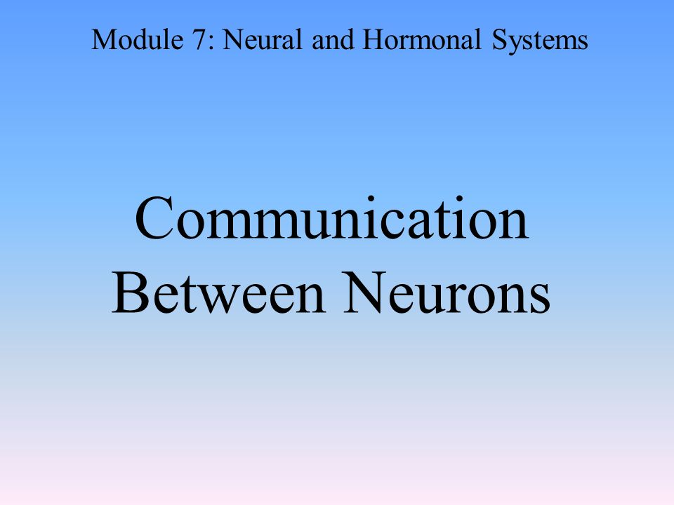 Communication Between Neurons Module 7: Neural and Hormonal Systems