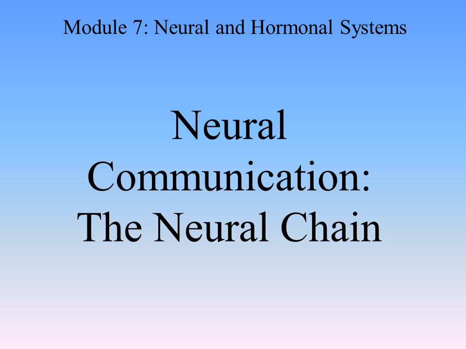 Neural Communication: The Neural Chain Module 7: Neural and Hormonal Systems