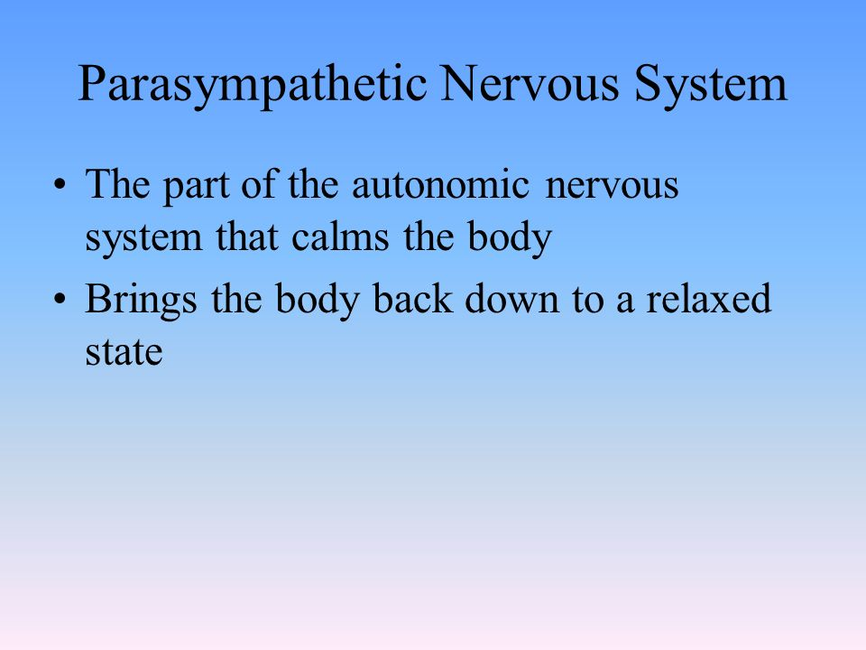 Parasympathetic Nervous System The part of the autonomic nervous system that calms the body Brings the body back down to a relaxed state