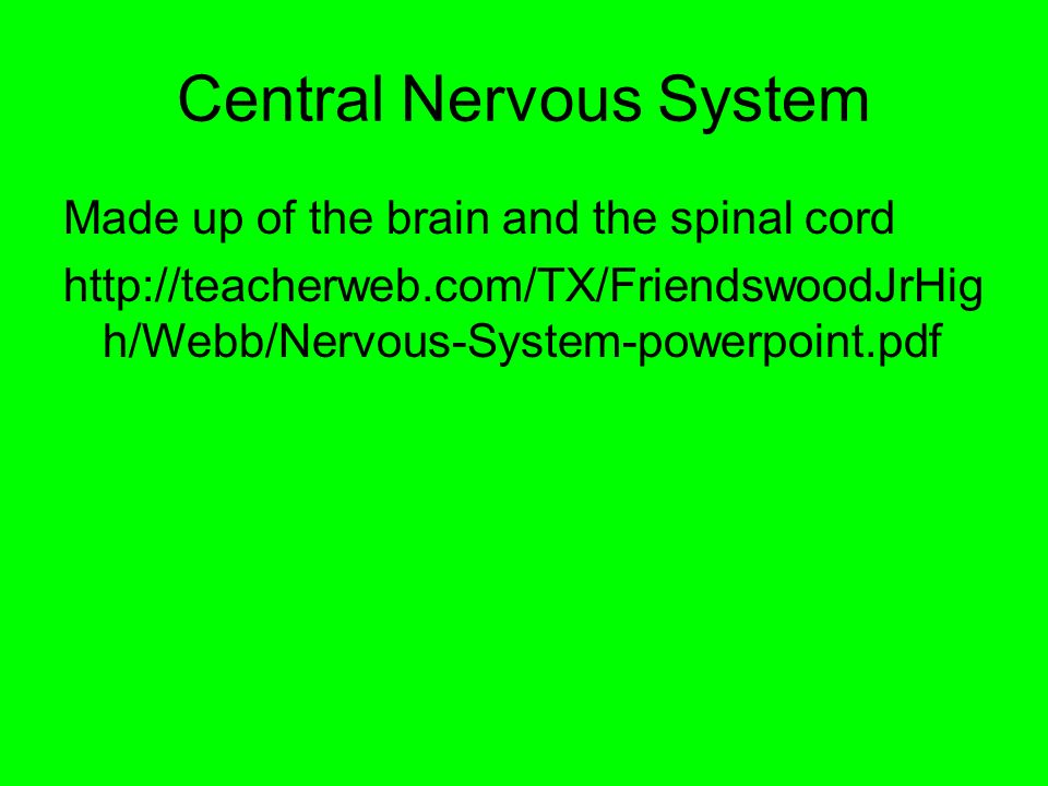 Central Nervous System Made up of the brain and the spinal cord   h/Webb/Nervous-System-powerpoint.pdf