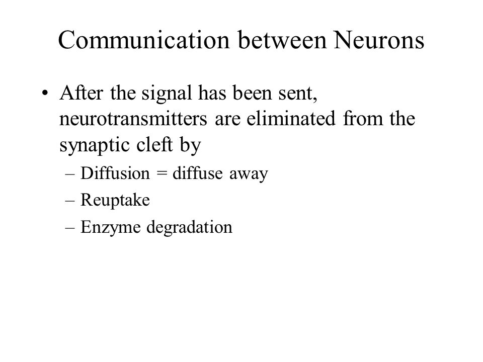Communication between Neurons The neurotransmitters will diffuse across the cleft and bind to receptors on the next neuron (postsynaptic neuron).
