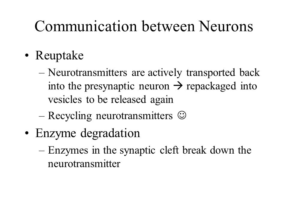 Communication between Neurons After the signal has been sent, neurotransmitters are eliminated from the synaptic cleft by –Diffusion = diffuse away –Reuptake –Enzyme degradation