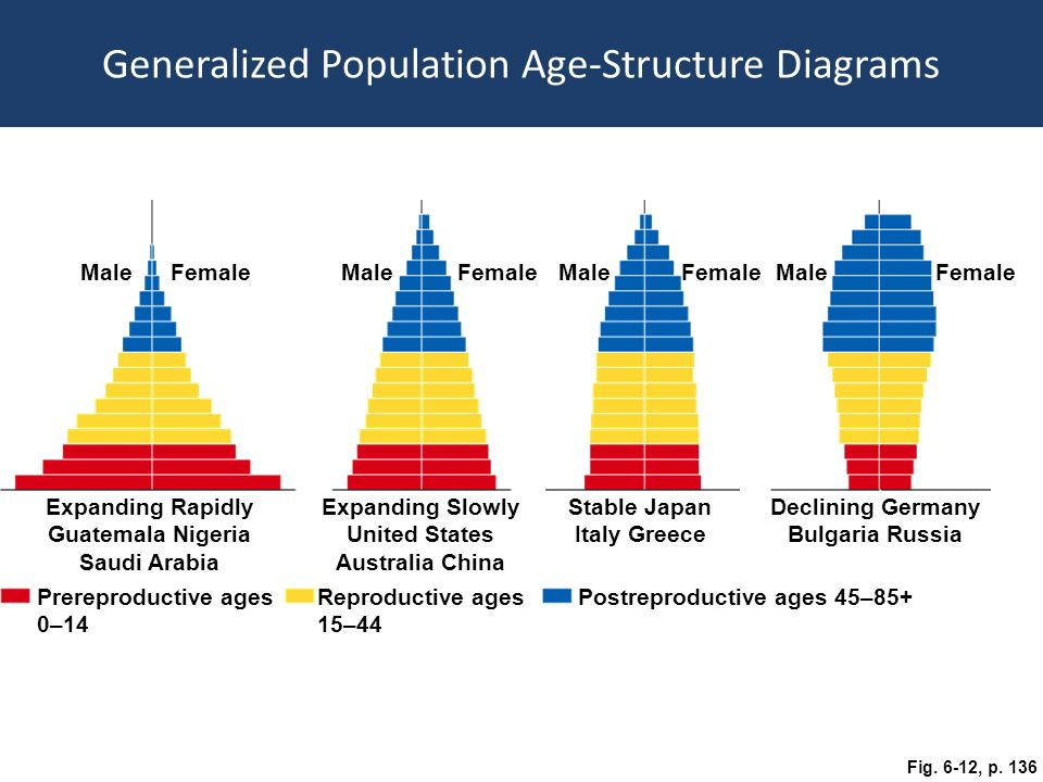 Population Age Structure Ch 6 Population Age Structure Age