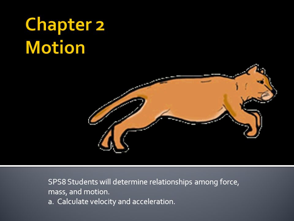SPS8 Students will determine relationships among force, mass, and motion.