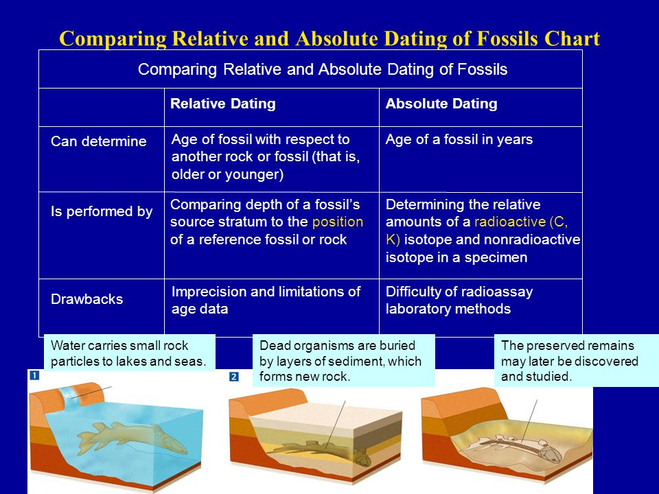 Relative and absolute dating comparisons