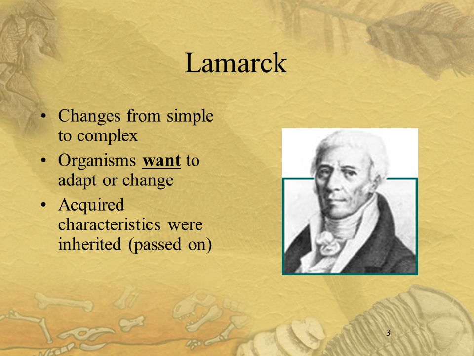 3 Lamarck Changes from simple to complex Organisms want to adapt or change Acquired characteristics were inherited (passed on)