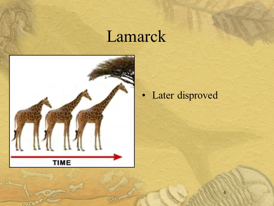 4 Lamarck Later disproved