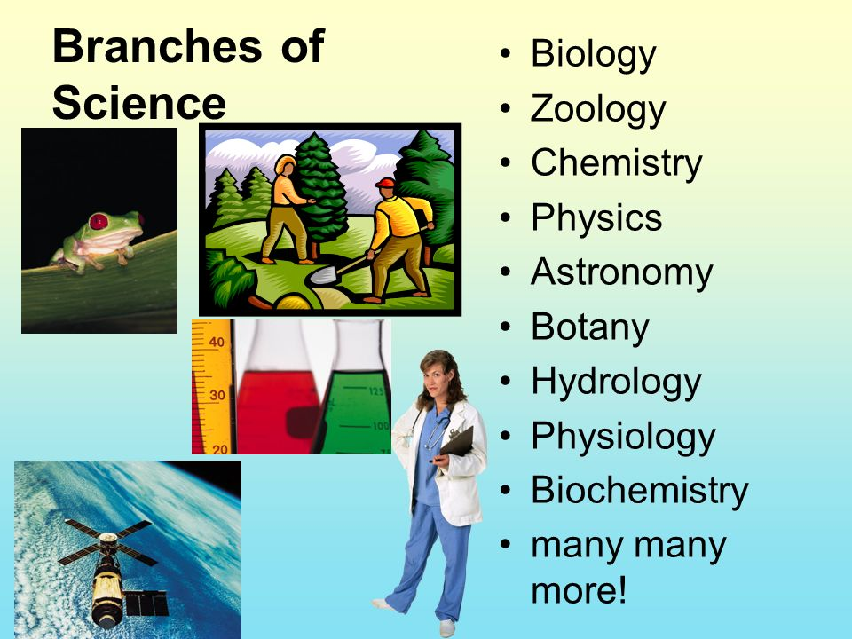 Branches of Science Biology Zoology Chemistry Physics Astronomy Botany Hydrology Physiology Biochemistry many many more!