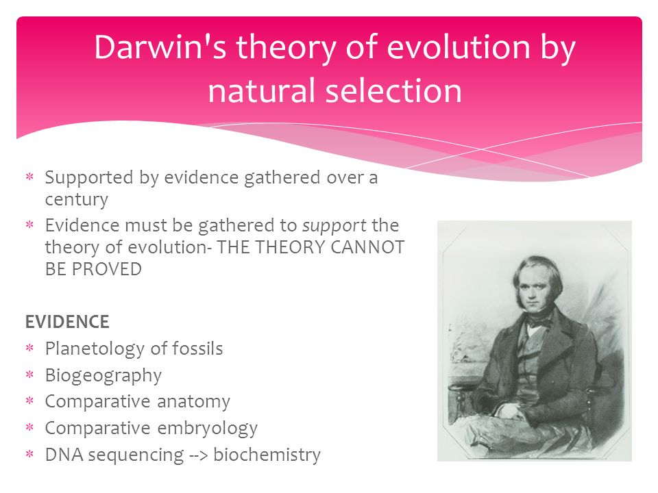 Evidence for Evolution.  Supported by evidence gathered over a ...