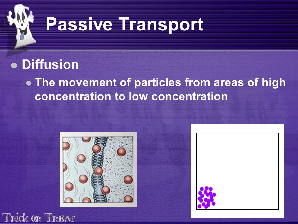 Passive Transport Diffusion The movement of particles from areas of high concentration to low concentration