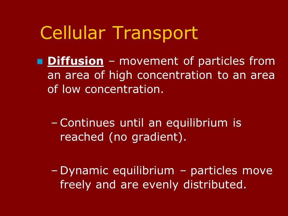 Cellular Transport Diffusion – movement of particles from an area of high concentration to an area of low concentration.