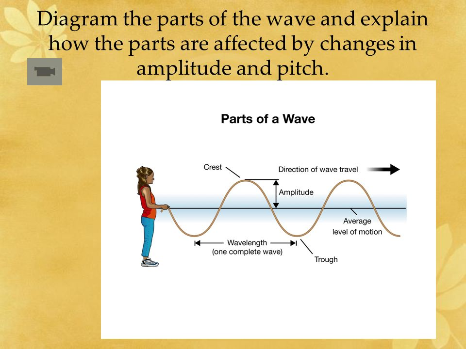 Diagram the parts of the wave and explain how the parts are affected by changes in amplitude and pitch.