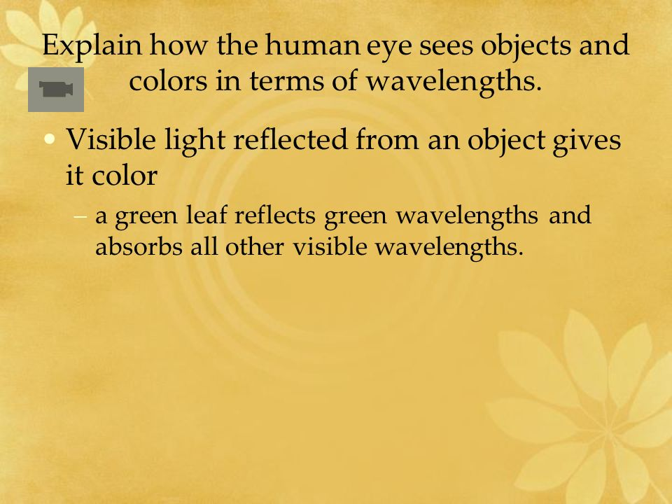 Explain how the human eye sees objects and colors in terms of wavelengths.
