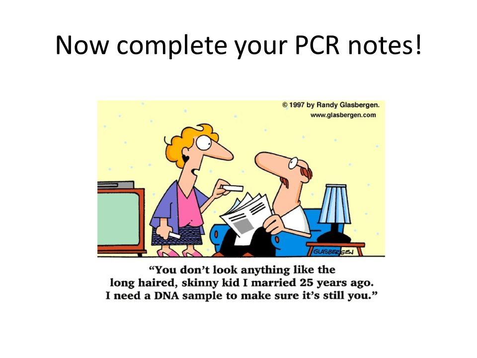 Now complete your PCR notes!
