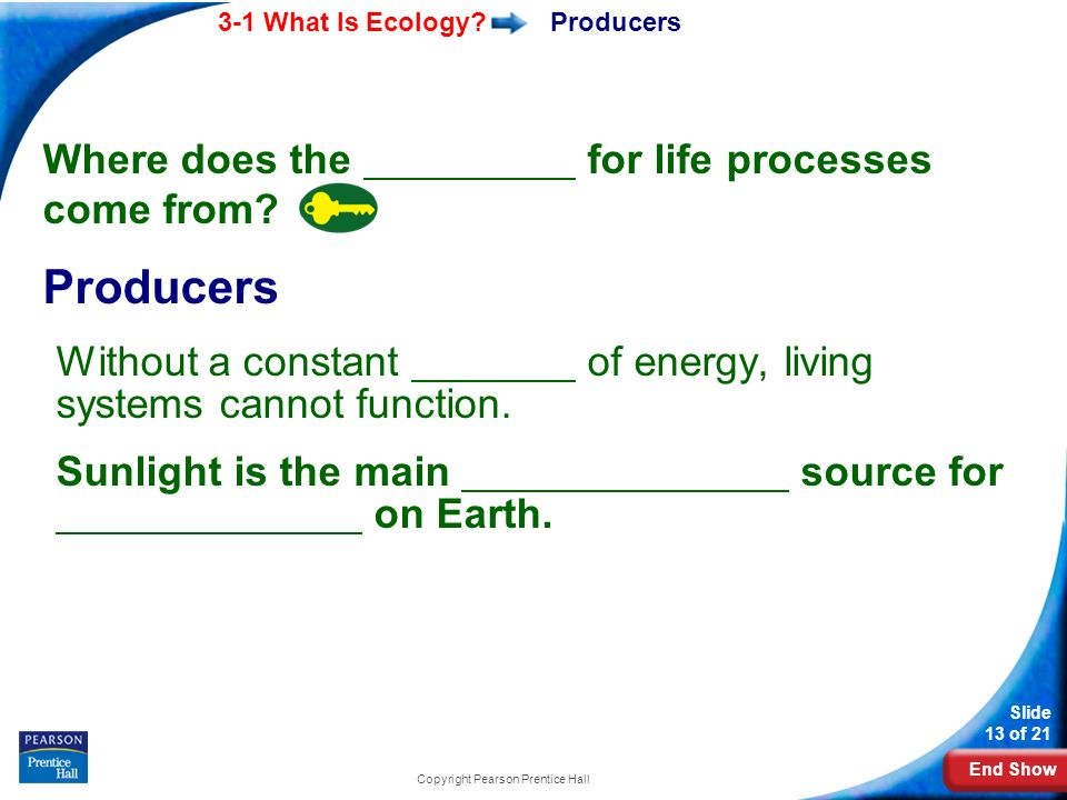 End Show 3-1 What Is Ecology.