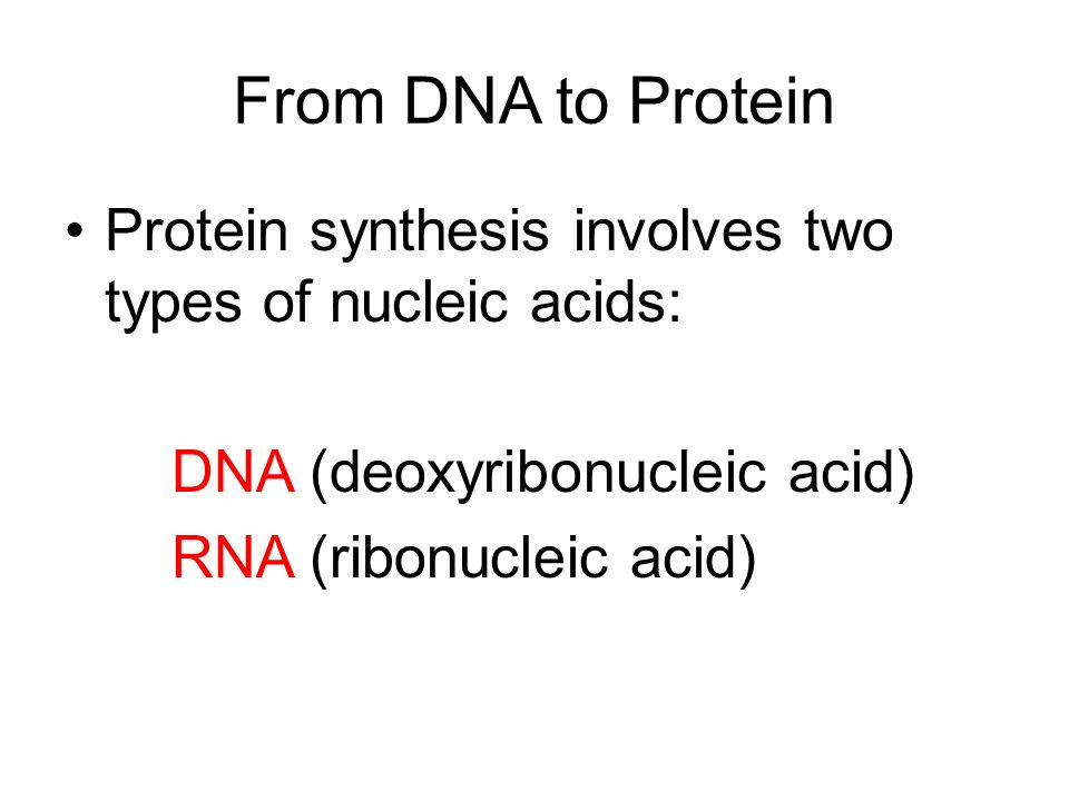 From DNA to Protein Protein synthesis involves two types of nucleic acids: DNA (deoxyribonucleic acid) RNA (ribonucleic acid)