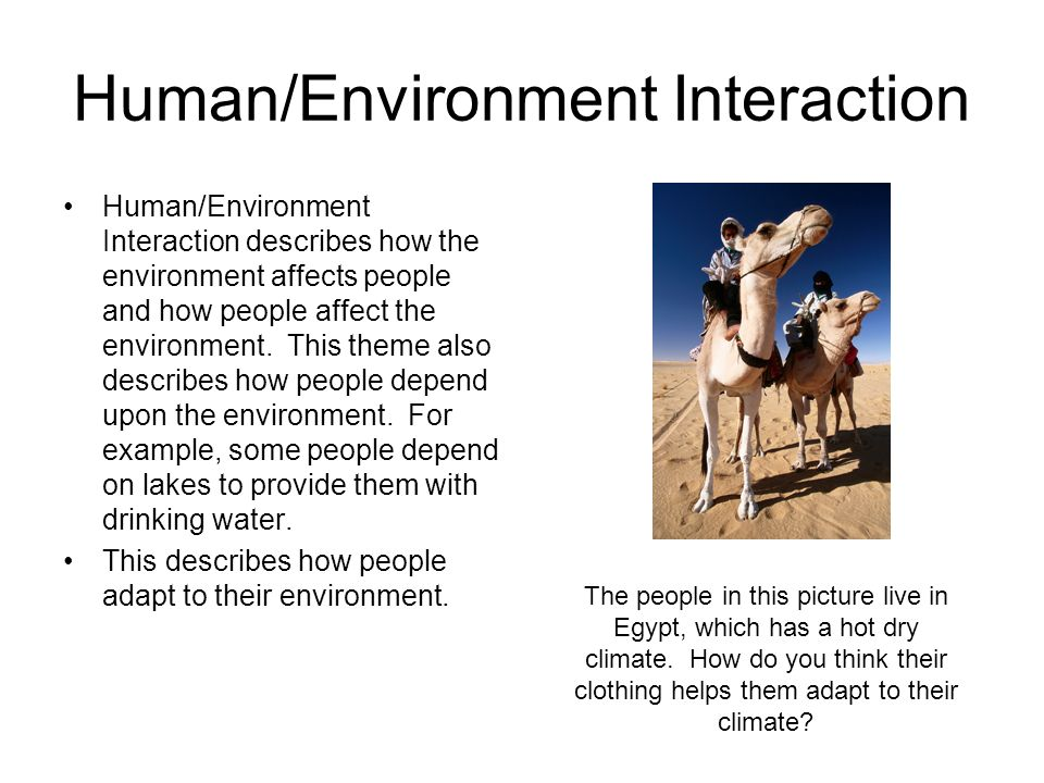 how the environment affects learning The environment is everything that affects the individual except his genes there are many potential environmental influences that help to shape personality these include the place we live and the people around us.