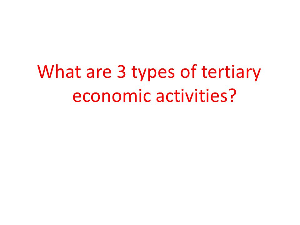 What are 3 types of tertiary economic activities