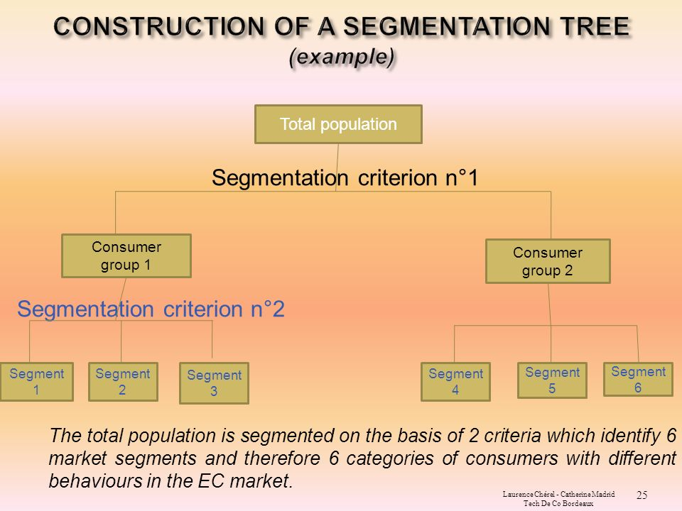 samsung propose segmentation criteria Levels of segmentation samsung is targeting the customer market by dividing it into diferent segments and offering each segment different product based on their common characteristics bases for segmenting consumer markets the consumer market for samsung products has been divided using four schemes of segmentation variables ie geographic.