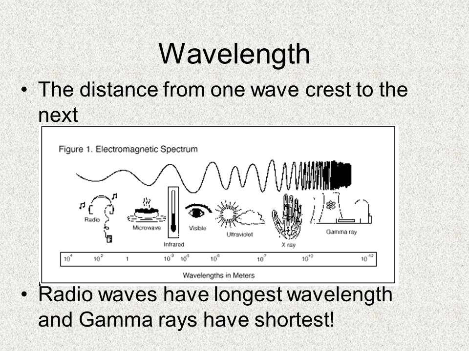 Wavelength The distance from one wave crest to the next Radio waves have longest wavelength and Gamma rays have shortest!