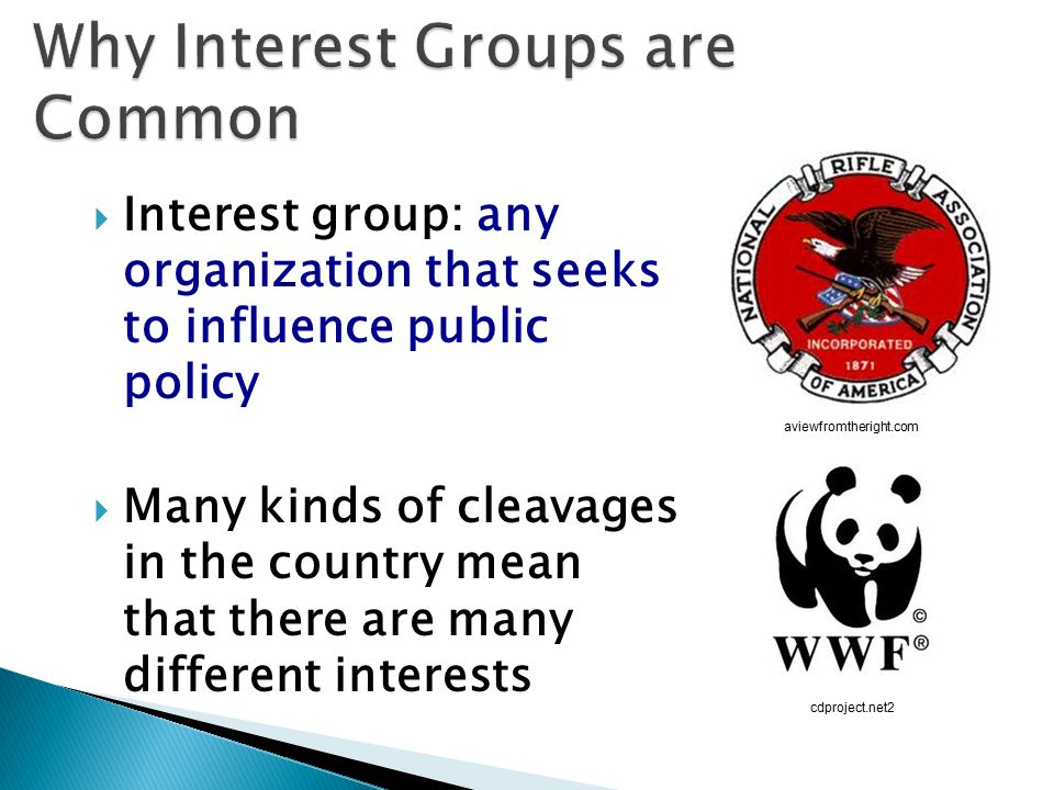 any group that seeks to influence public policy