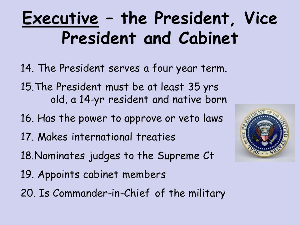 Executive Branch – the President ENFORCES LAWS