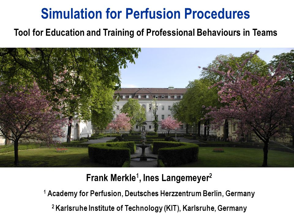 Simulation for Perfusion Procedures Tool for Education and Training ...
