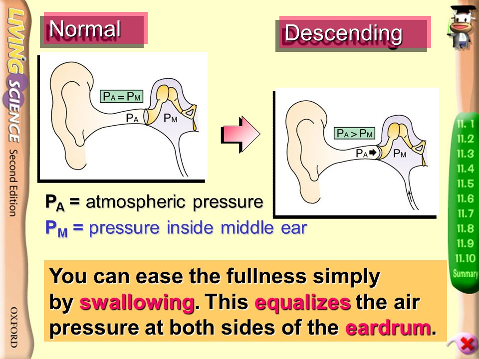 Have you experienced fullness in the ears when descending in an aircraft or a lift.