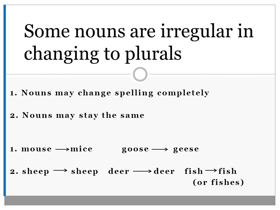 1. Nouns may change spelling completely 2. Nouns may stay the same 1.