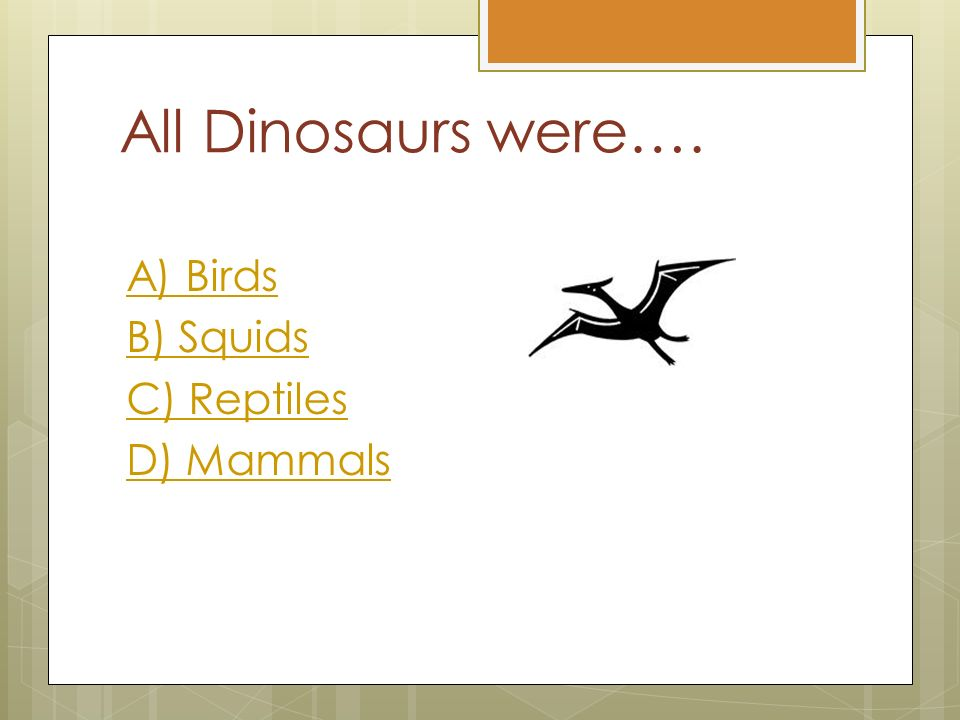 Ms  Harkin's 3 rd Grade Class Dinosaur Quiz  Instructions