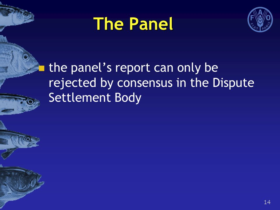 14 The Panel the panel's report can only be rejected by consensus in the Dispute Settlement Body