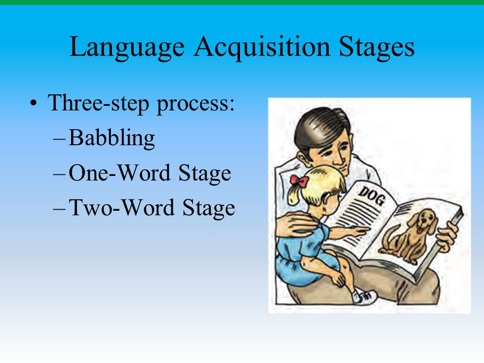 Language Acquisition Stages Three-step process: –Babbling –One-Word Stage –Two-Word Stage