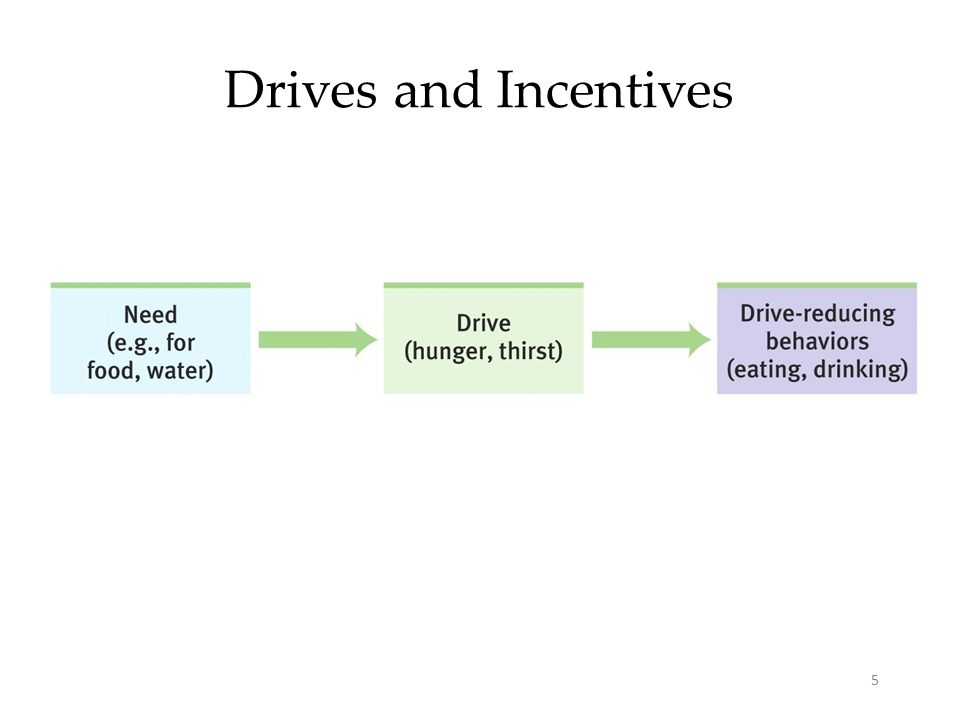 5 Drives and Incentives