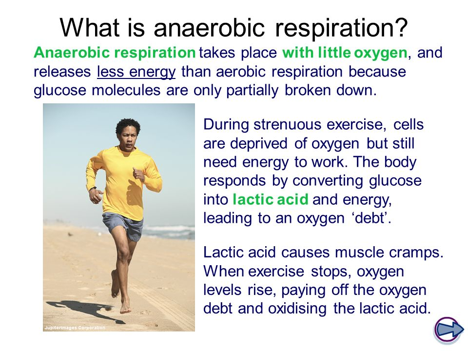 What is anaerobic respiration.