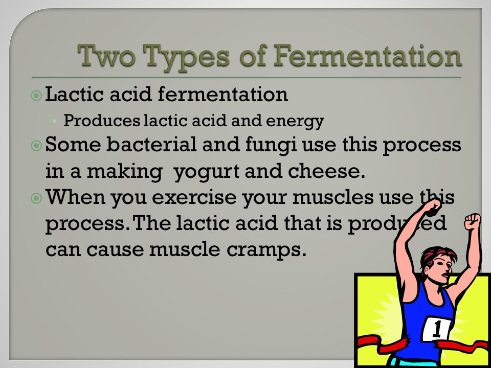  Lactic acid fermentation Produces lactic acid and energy  Some bacterial and fungi use this process in a making yogurt and cheese.
