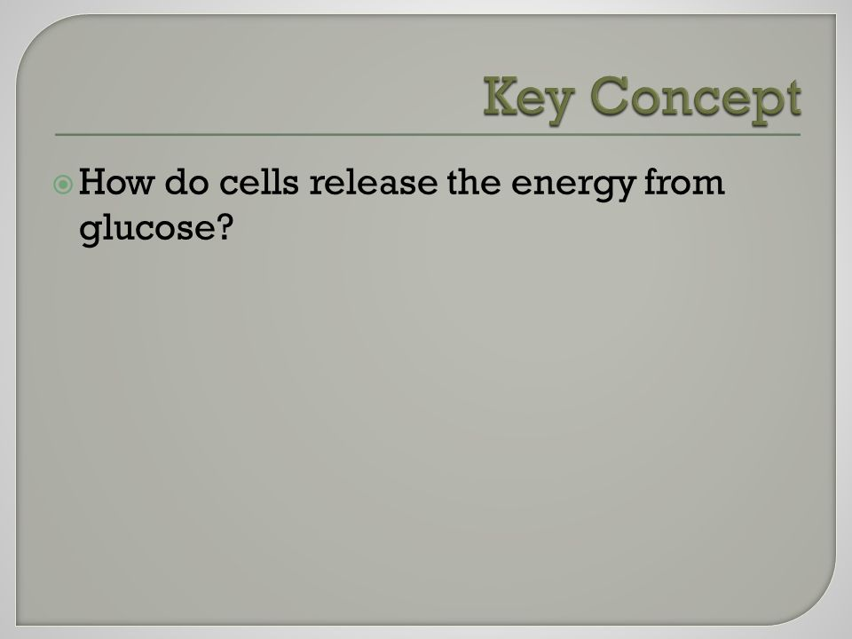  How do cells release the energy from glucose