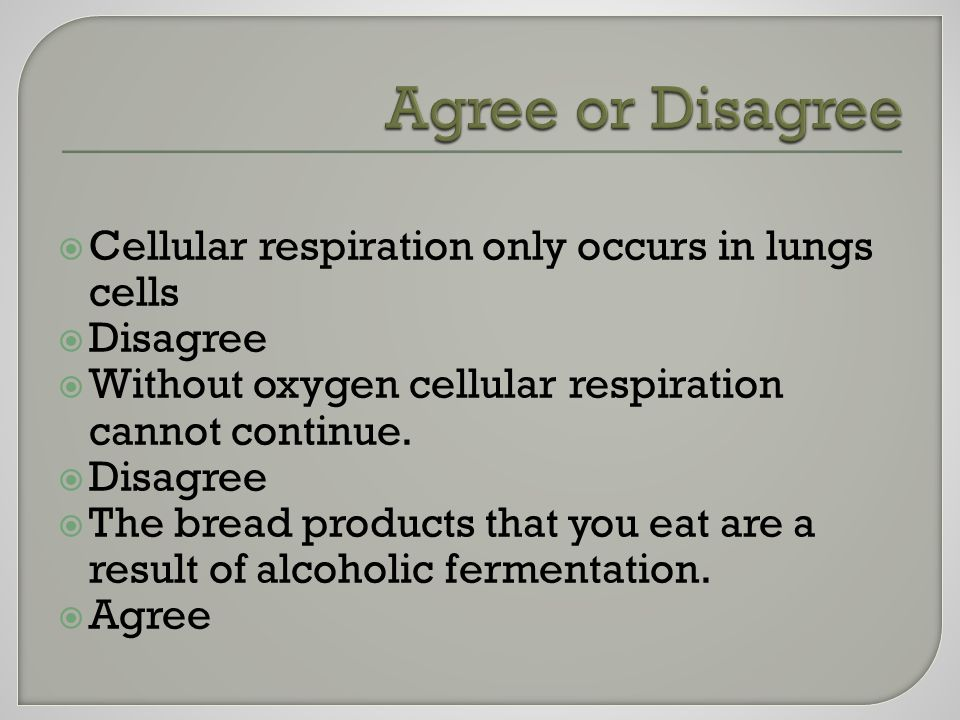  Cellular respiration only occurs in lungs cells  Disagree  Without oxygen cellular respiration cannot continue.