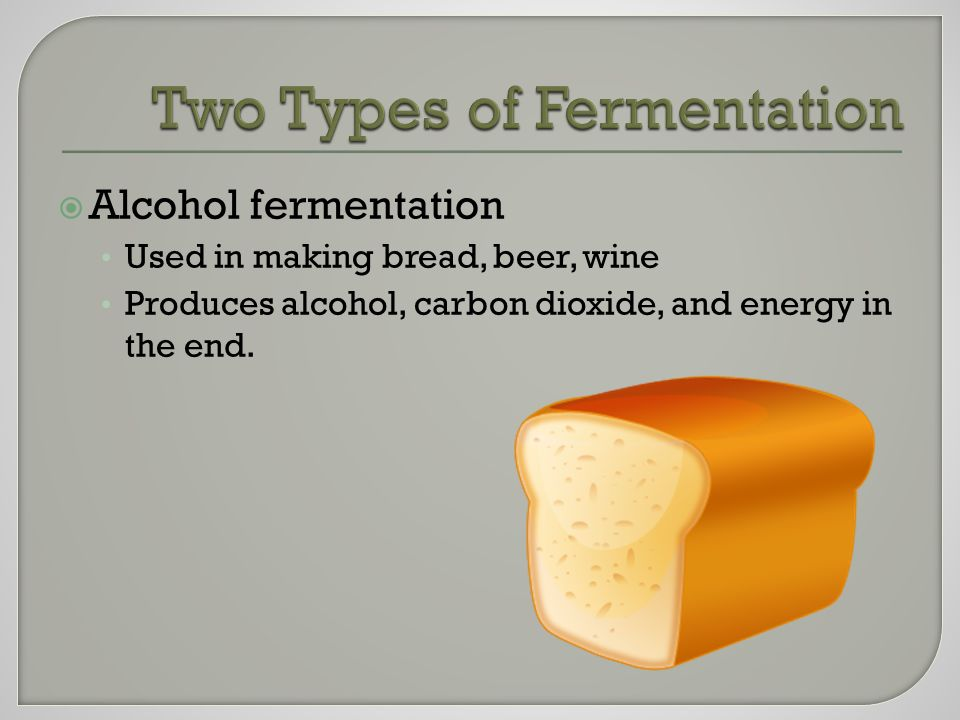  Alcohol fermentation Used in making bread, beer, wine Produces alcohol, carbon dioxide, and energy in the end.