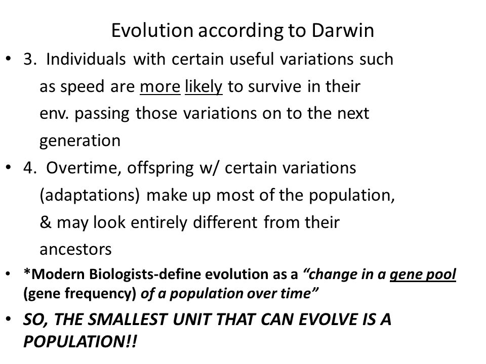 Evolution according to Darwin 3.