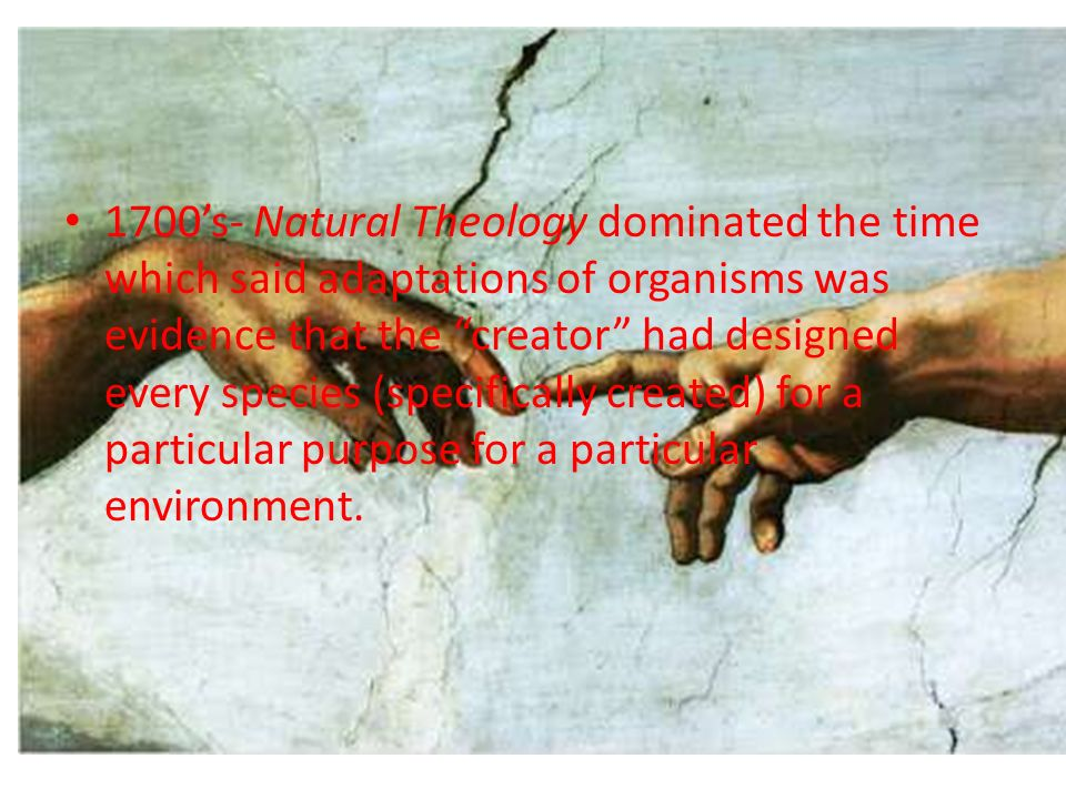 1700's- Natural Theology dominated the time which said adaptations of organisms was evidence that the creator had designed every species (specifically created) for a particular purpose for a particular environment.