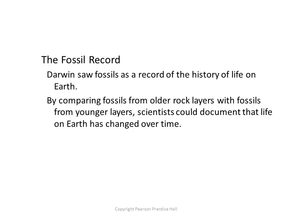 Copyright Pearson Prentice Hall The Fossil Record Darwin saw fossils as a record of the history of life on Earth.