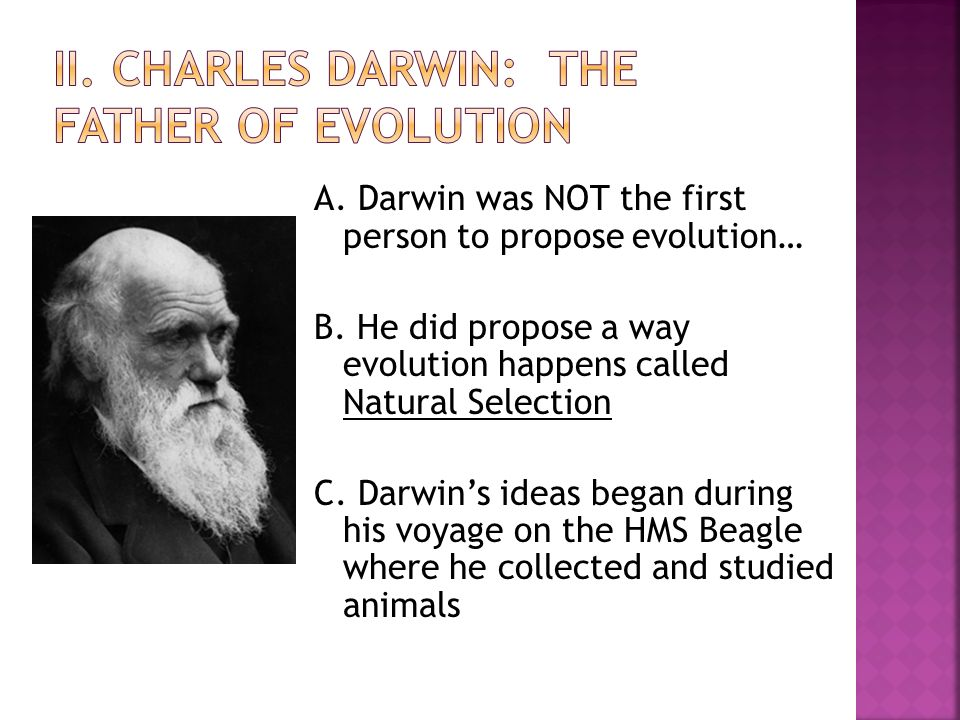 understanding the concept behind charles darwins natural selection It's 150 years since darwin made one of the the most significant breakthroughs in scientific history - the theory of natural selection robin mckie tells the extraordinary story behind the origin.