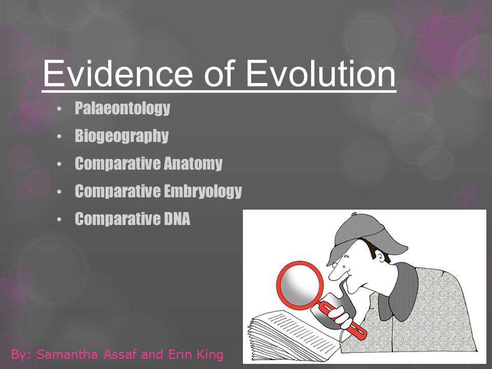 Evidence Of Evolution Palaeontology Biogeography Comparative Anatomy
