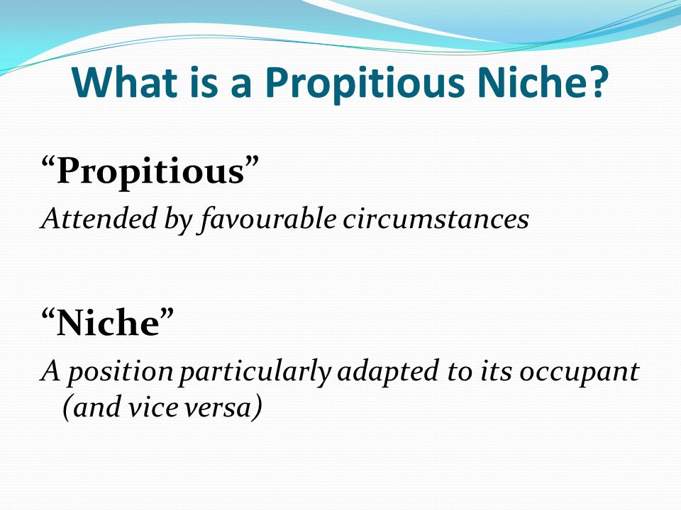 propitious niche definition