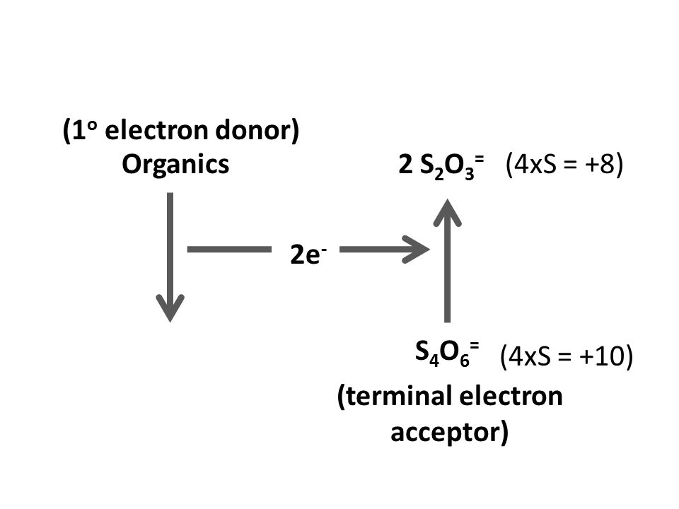 Please explain the oxidation state of S in S4O6^2- Related: MCQs ... | 720x960