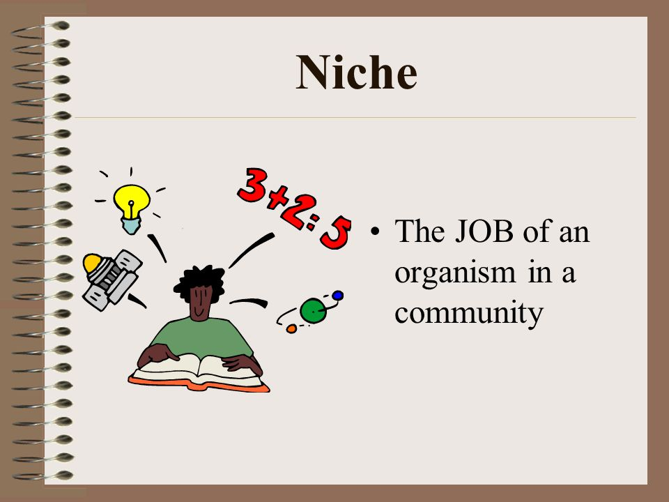 Niche The JOB of an organism in a community